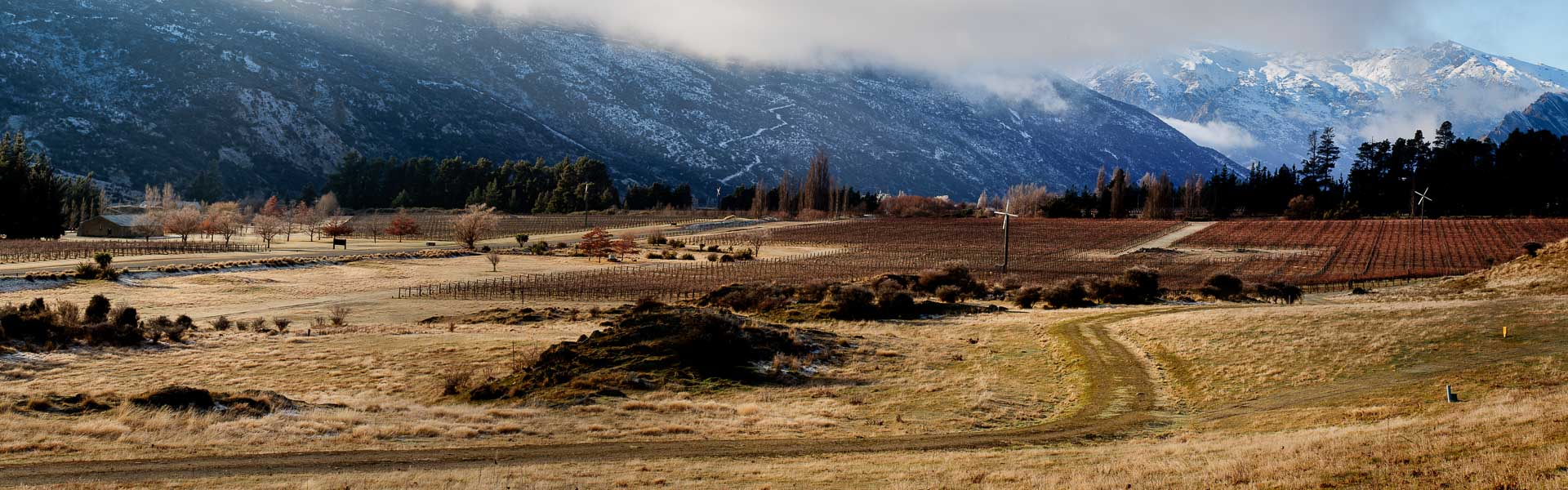 Gibbston Vista - Central Otago