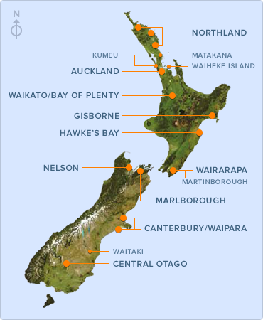 Discover the South Island and New Zealands Artisanal Vineyards